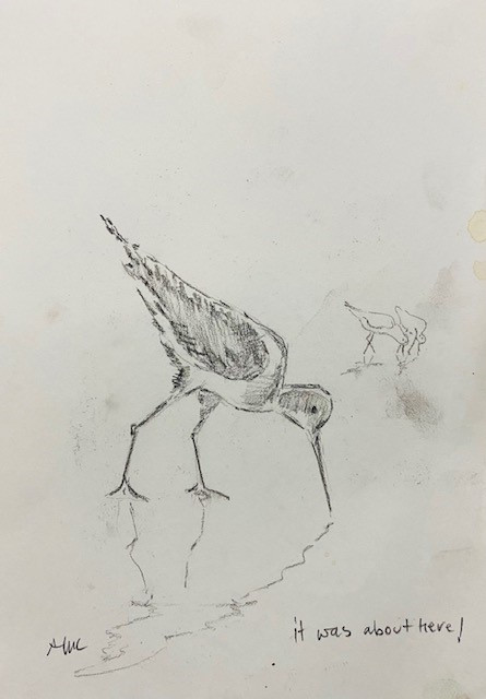 Drawing 31.jpg