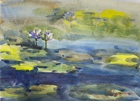 The Waterlillies