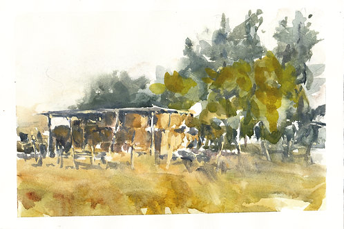 Hay Shed - Watercolour on 300gsm