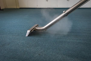 Steam Carpet Cleaning  with steam and wand.jpg