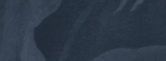 Fond-Bleu-CoverFB.png