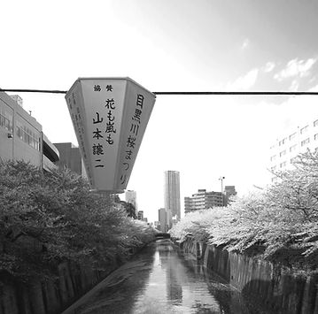 japan grey.jpg