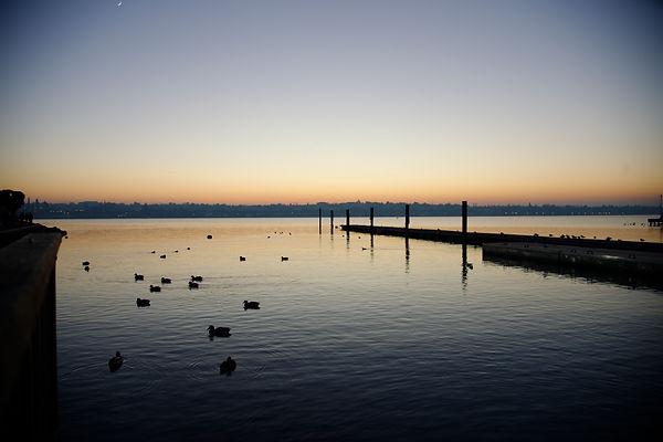 Paesaggio | Lago di Garda