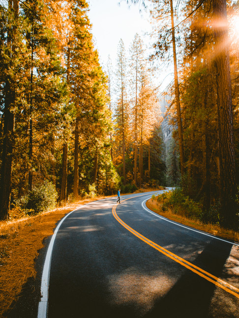 Roads through Yosemite National Park