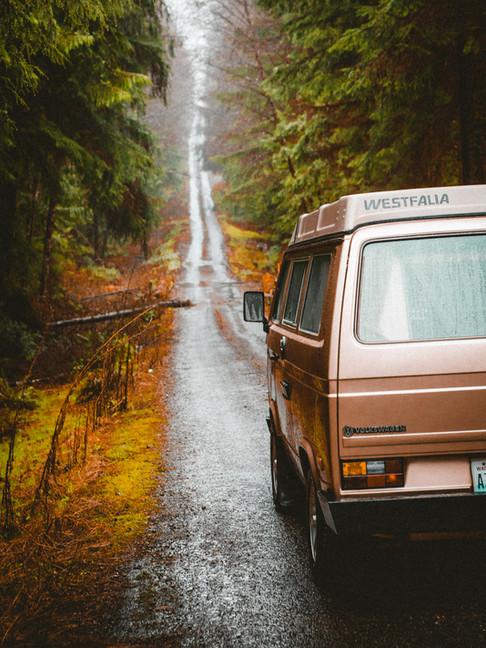 VW Westfalia in the Hoh Rainforest