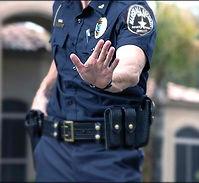 Officer Survival