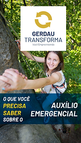 CAPAS GERDAU-02.png