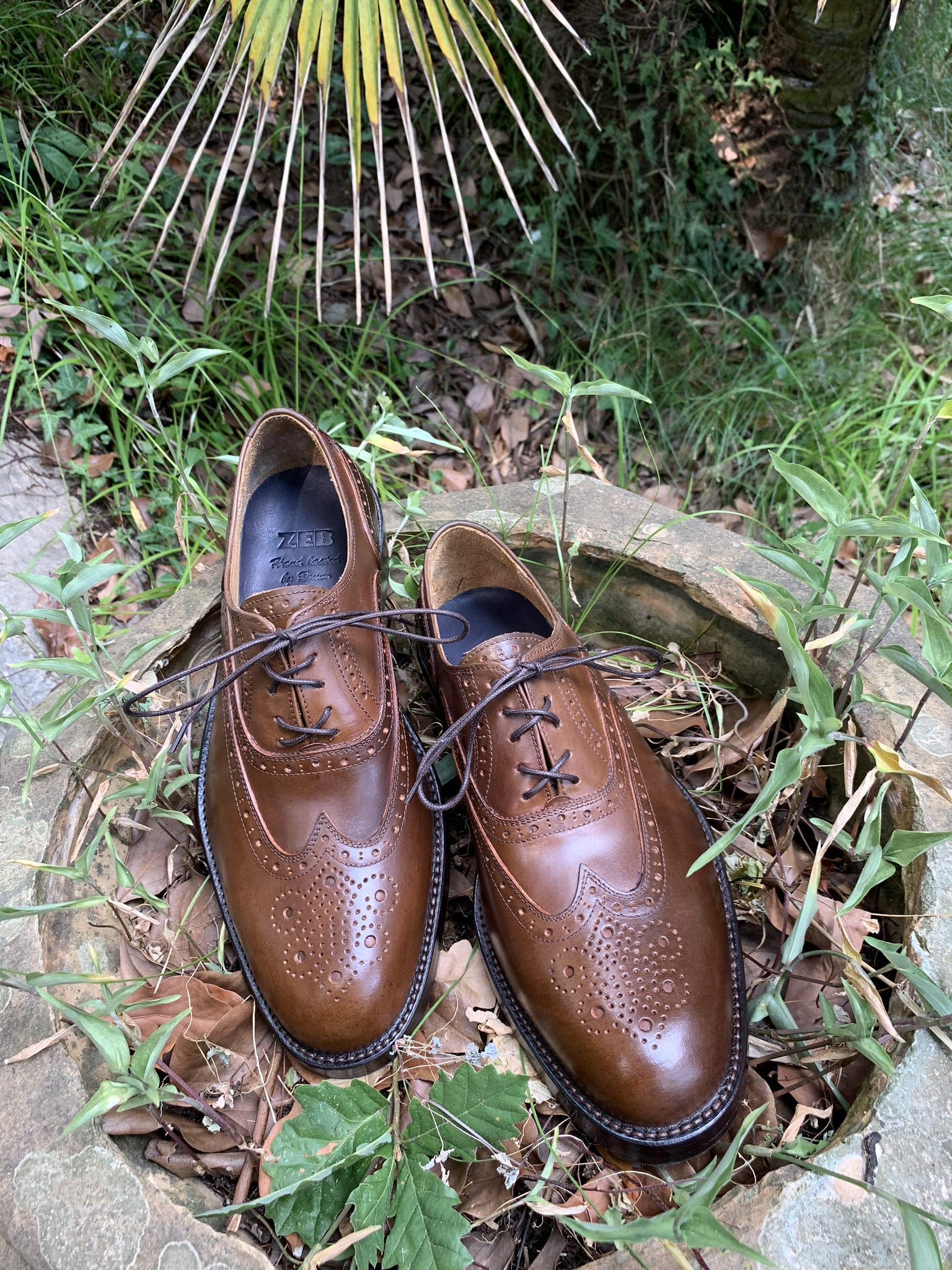 Ivy wood shell cordovan Oxford 3