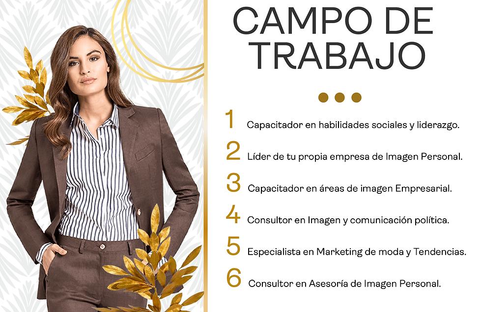 CAMPO DE TRABAJO LANDING_Mesa de trabajo