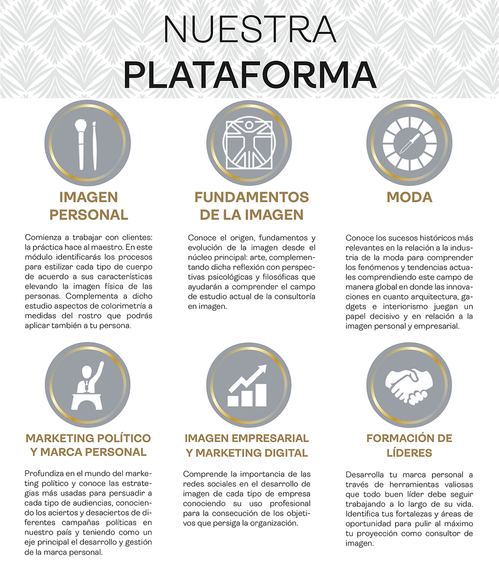 plataforma_Mesa de trabajo 1.png