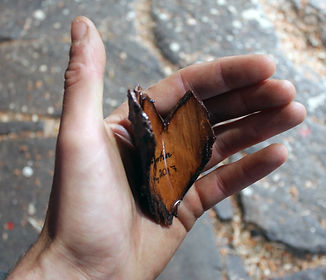 Bark Heart in hand.jpg