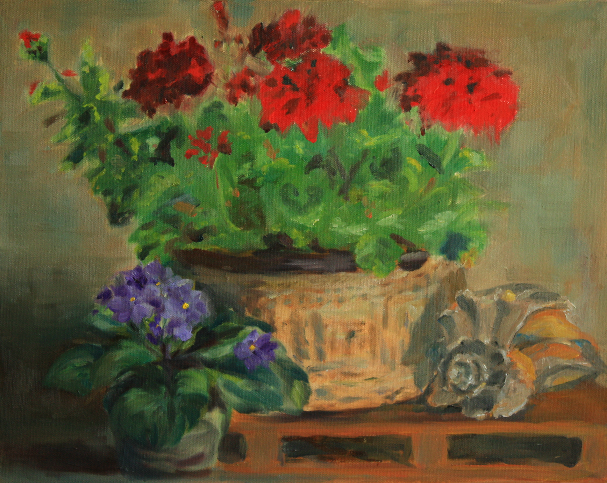 Geraniums in bloom