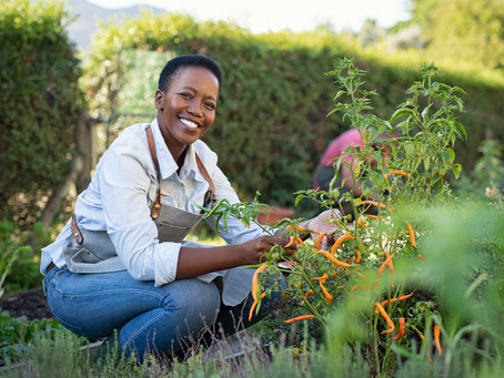 5 Black-Owned Farms You Should Support