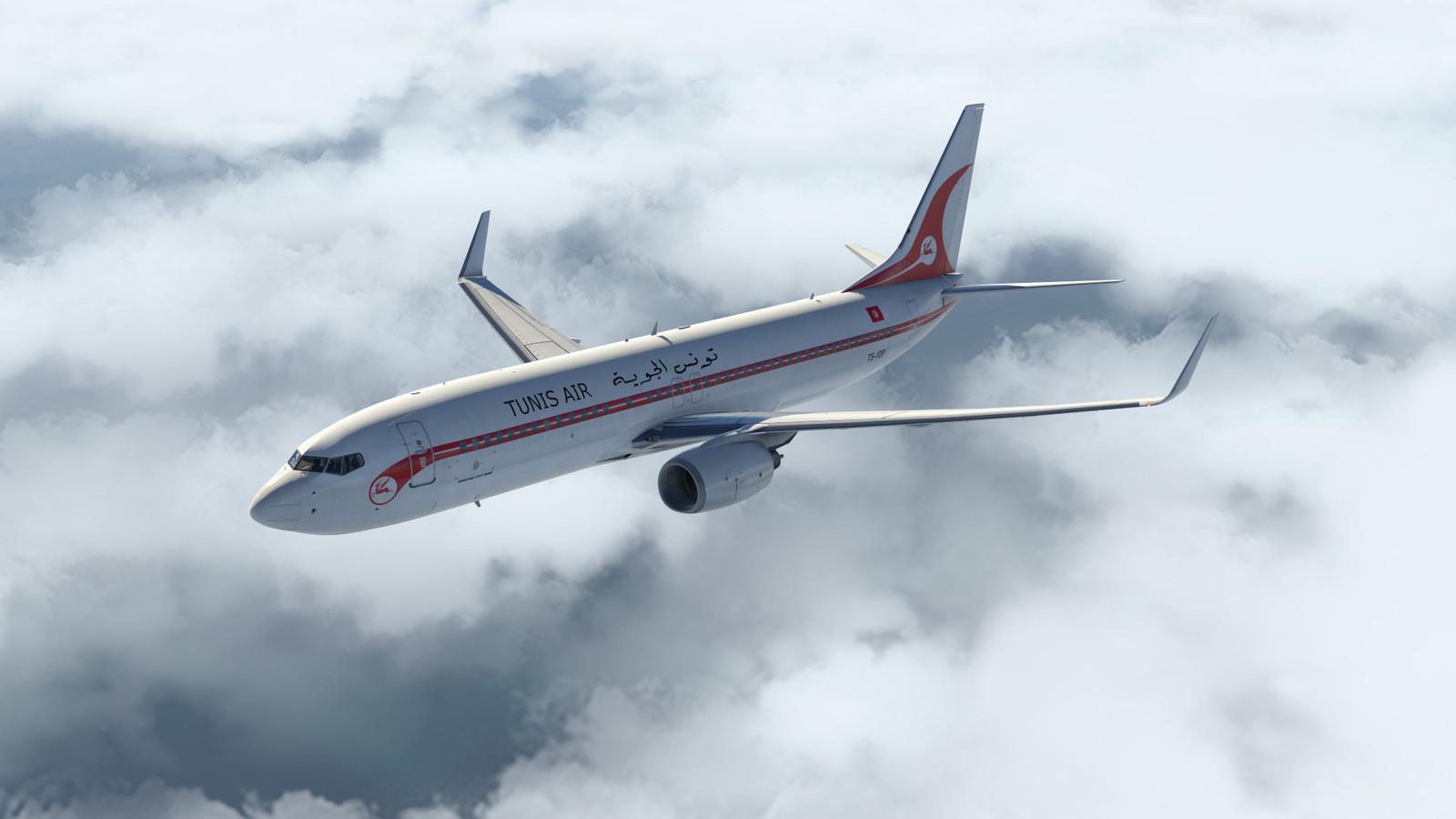 Flyjsim 737 Liveries