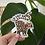 Thumbnail: Go Get 'Em Tiger Sticker