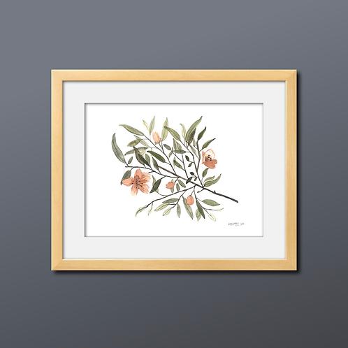Orange Blossom Watercolor Print