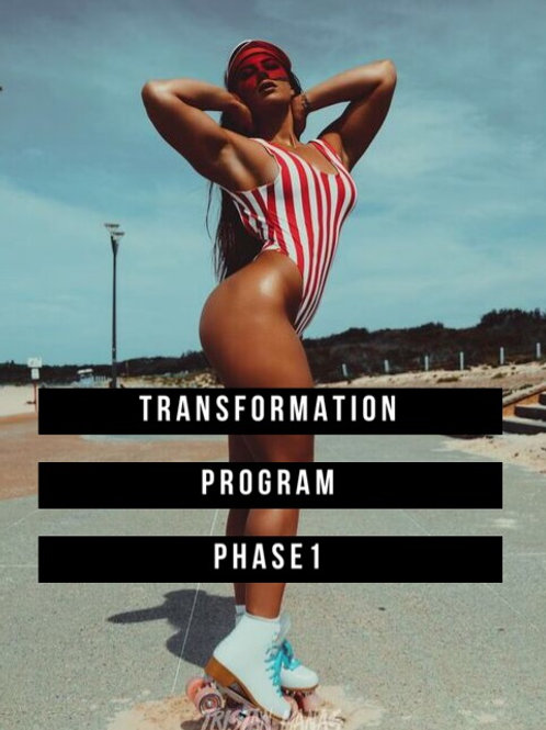 Transformation Program Phase 1