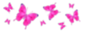 DAZZLED-butterfly-banner-500x181.png