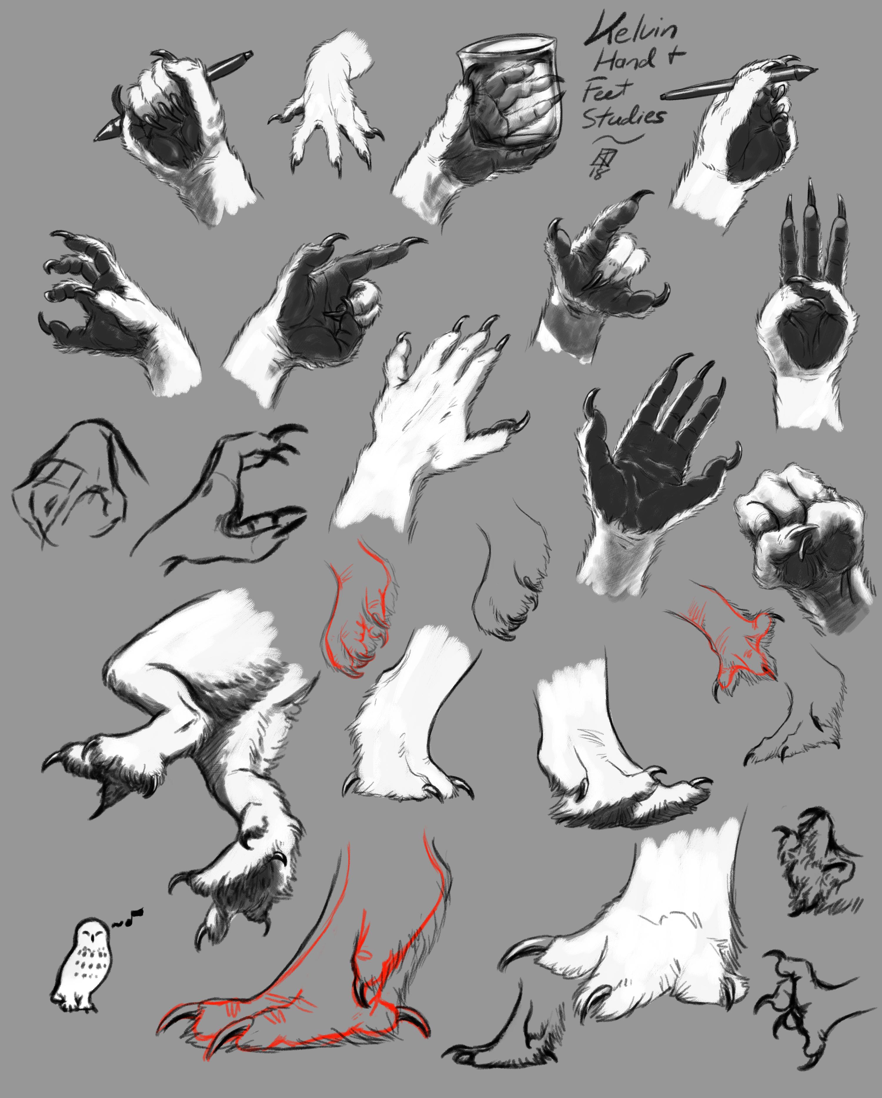Kelvin's Hands