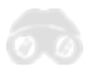 icon_discover_2x.png