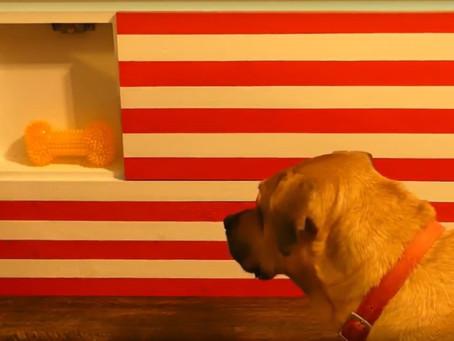 American Flag Wall Safe