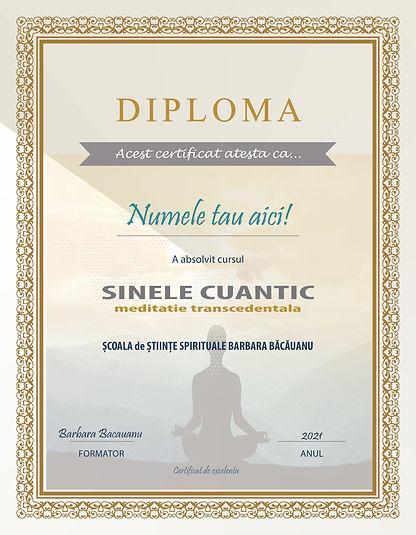 diploma sinele cuantic.jpg