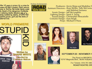 3 MORE SHOWS FOR STUPID KID! Dec 1, 2nd, and 3rd.