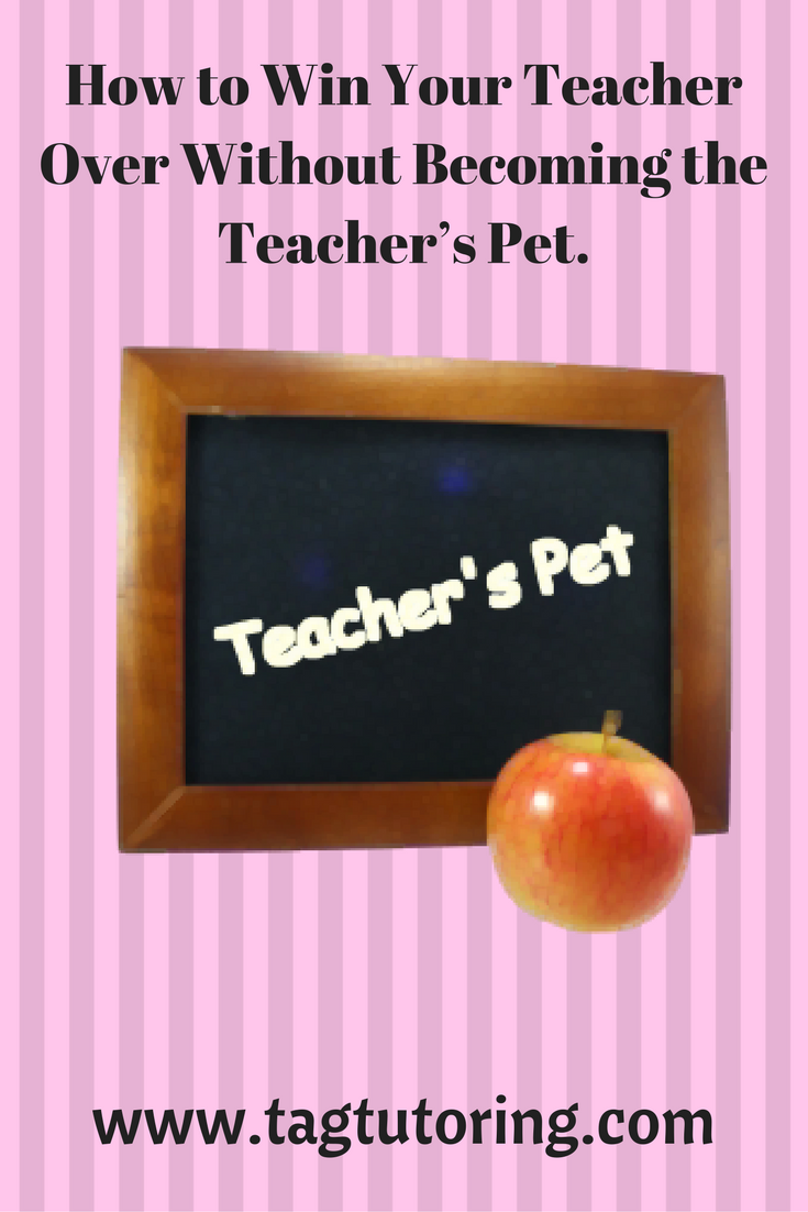 Teacher's Pet, Online Math Tutor, math help, teacher