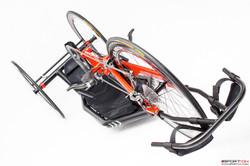 skorpion 004