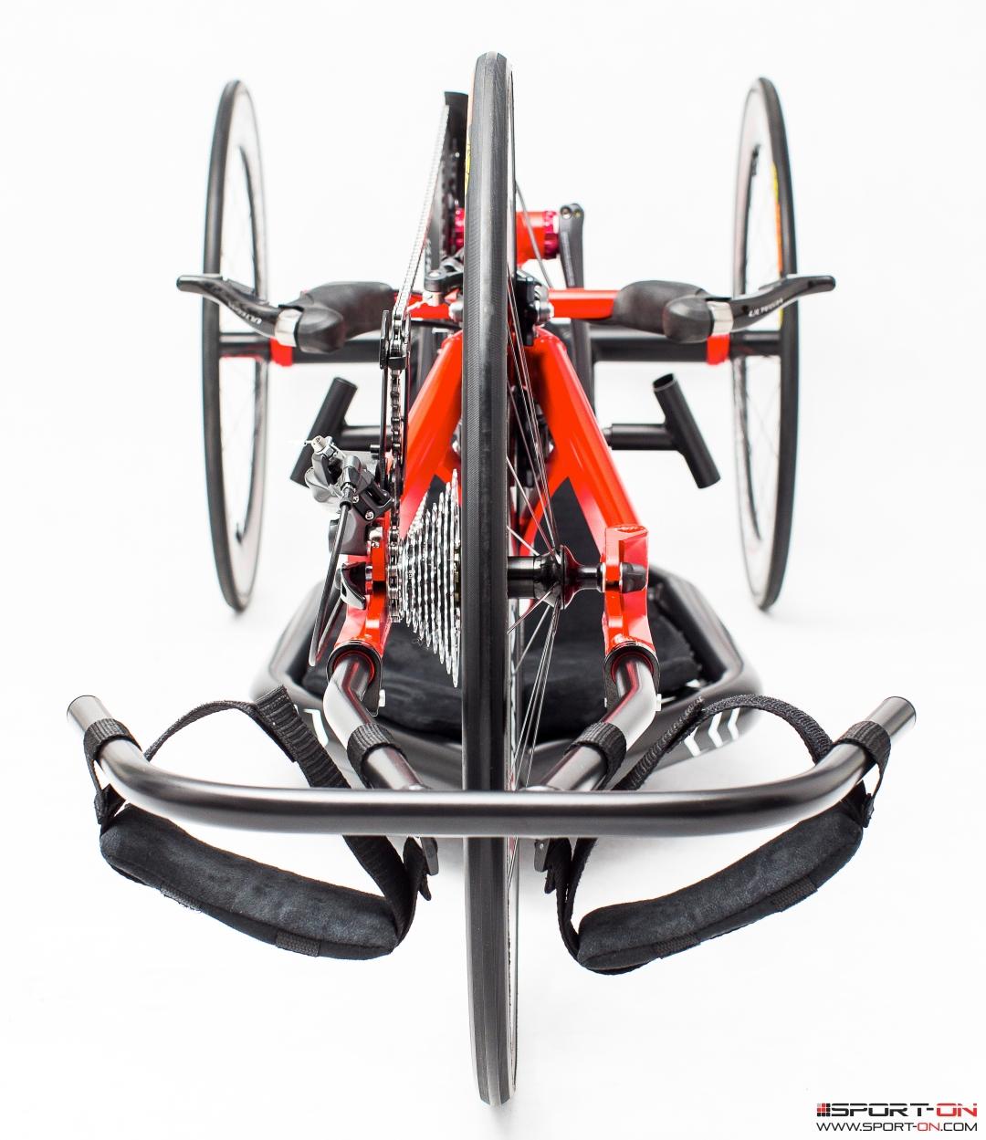 skorpion 005