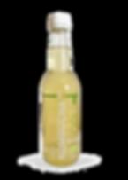 kombucha te verde  bottiglia nuova_edite