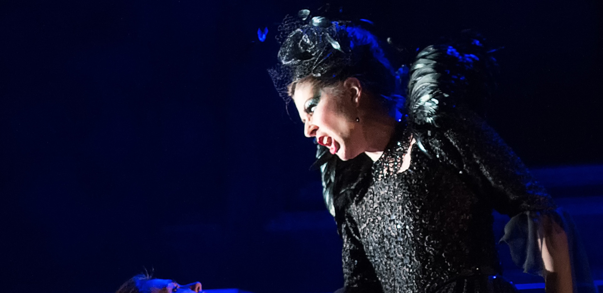 Queen of the Night, English Touring Opera