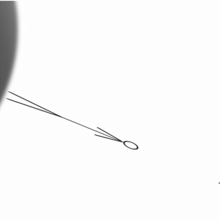 Falling into a black hole (observer)