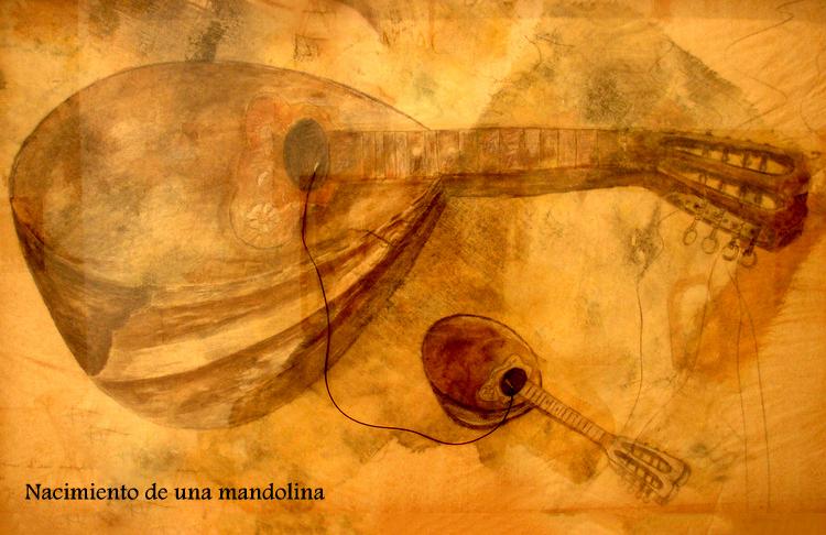 17.naissance d'1 mandoline