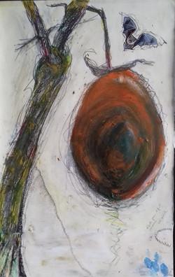 14. Unbekannte Frucht. Studie. 60x40cm