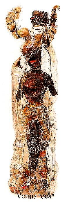 12. Venus Oca