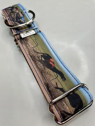 Greytcollar photo collar