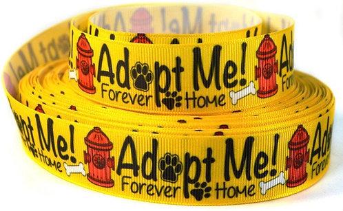 Adopt me leash and collar set