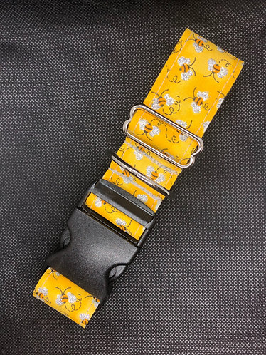 """1"""" buckle small and 1""""x6' leash"""