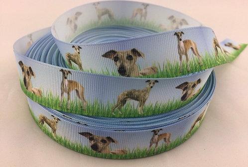 Greyhound/whippet martingale