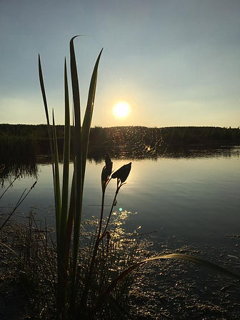 Sunset over Oak Pool
