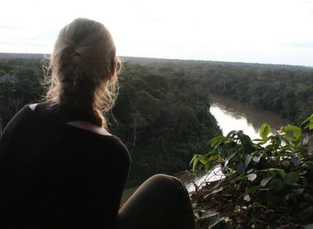 Et perspektiv på det frivillige-rejse marked set fra et mindre non-profit firma