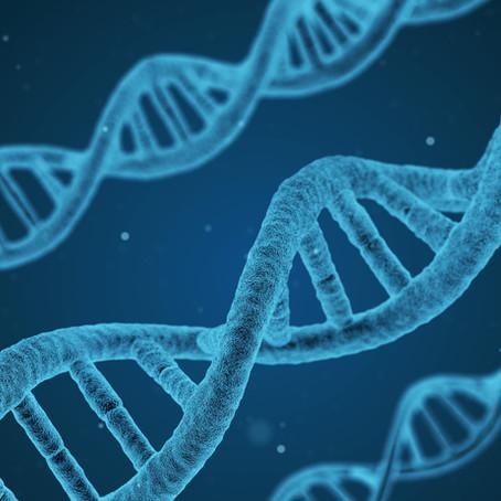 Obesidade: uma questão de genética?