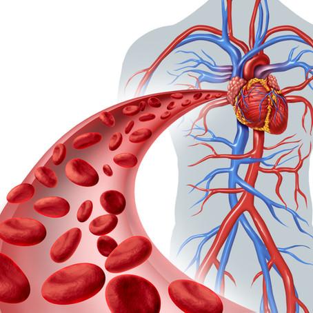 Dicas para melhorar a saúde cardiovascular