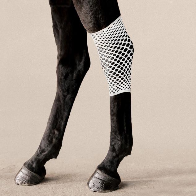 扭邊得治彈性繃帶-網狀-馬腿