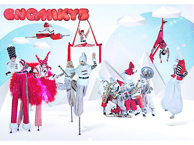 Los Gnomikys