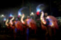 Flamencos Rosas