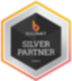 BX-silver-partner-600px.png