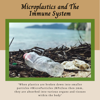 Microplastics and The Immune System (Guest Post)