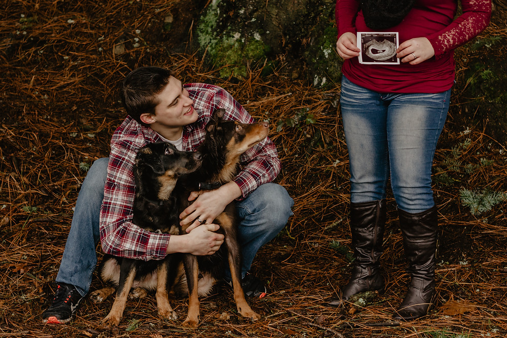 how to take photos with dogs